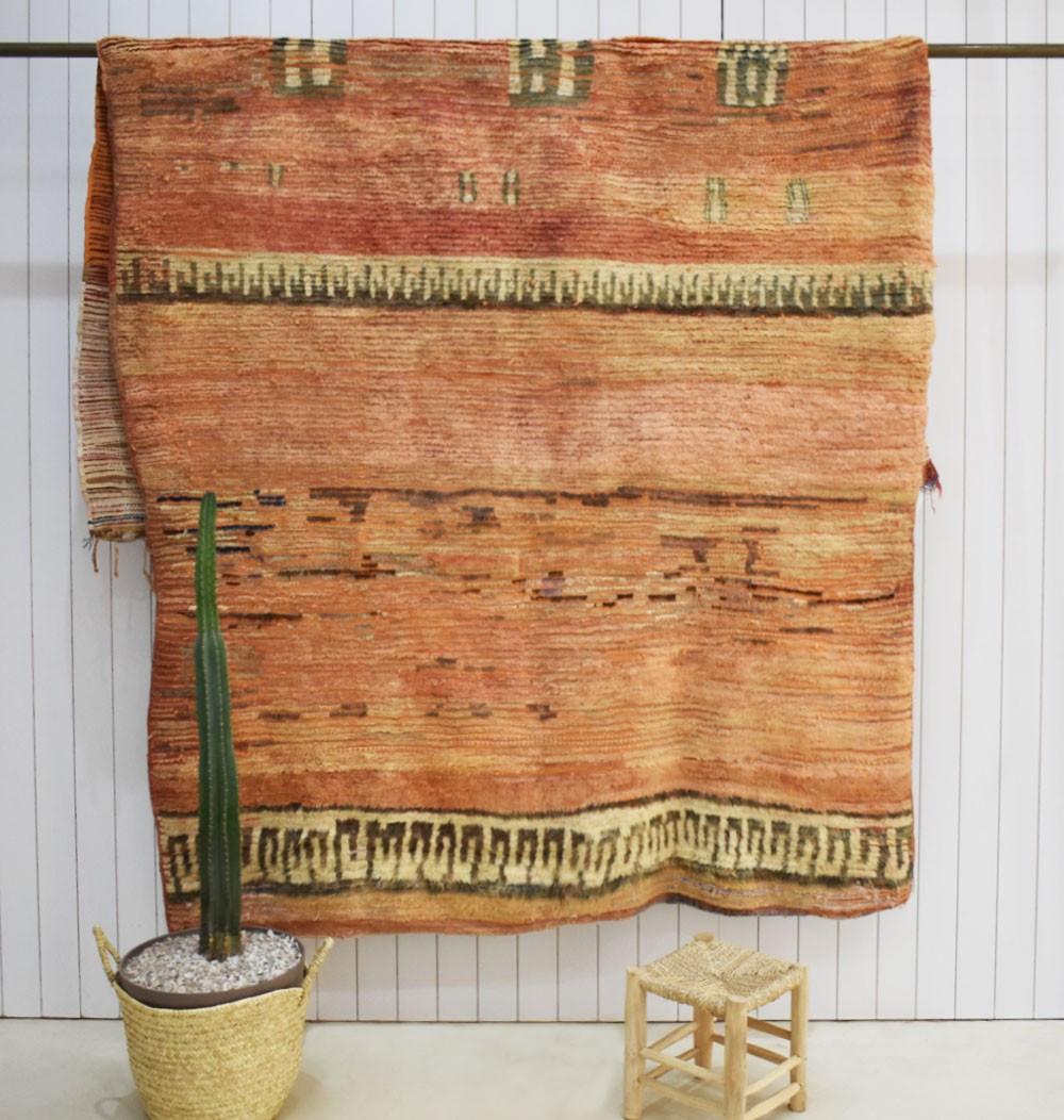 Vintage Prehistoric Rugs