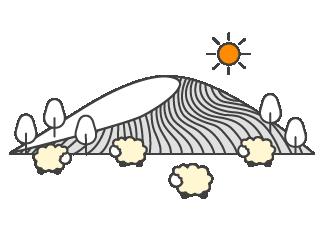 tonte-des-moutons-laine-naturelle.png
