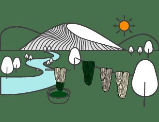teinte de la laine naturelle tissage tapis berbere
